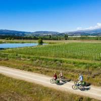 Otago Central Rail Trail - Muttontown   Lachlan Gardiner