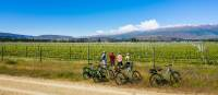 Checking out the vineyards on the Otago Central Rail Trail | Lachlan Gardiner