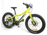 20' childs bike