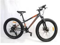 24' childs bike